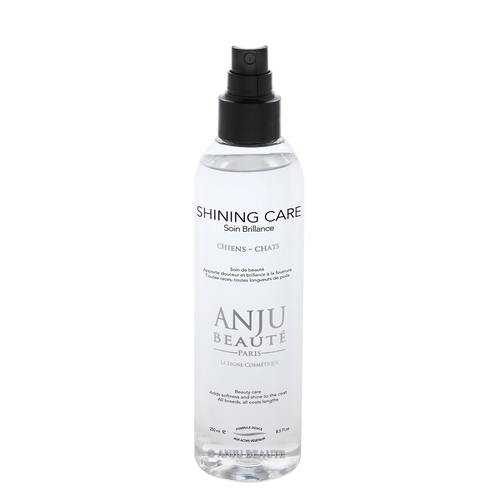 Spray Brillance Anju Beaute